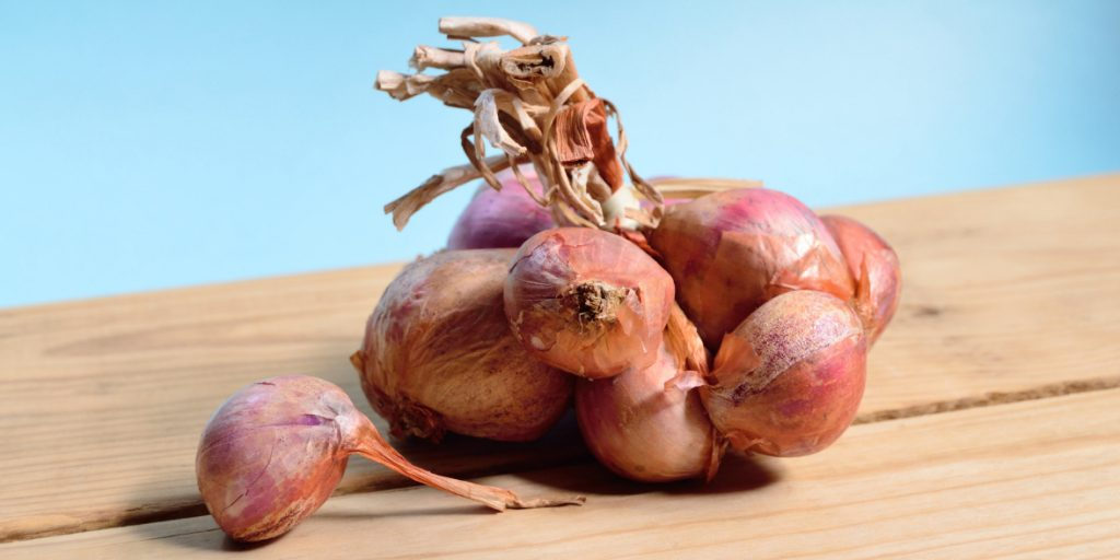 Whippet Foods to Avoid: Onions