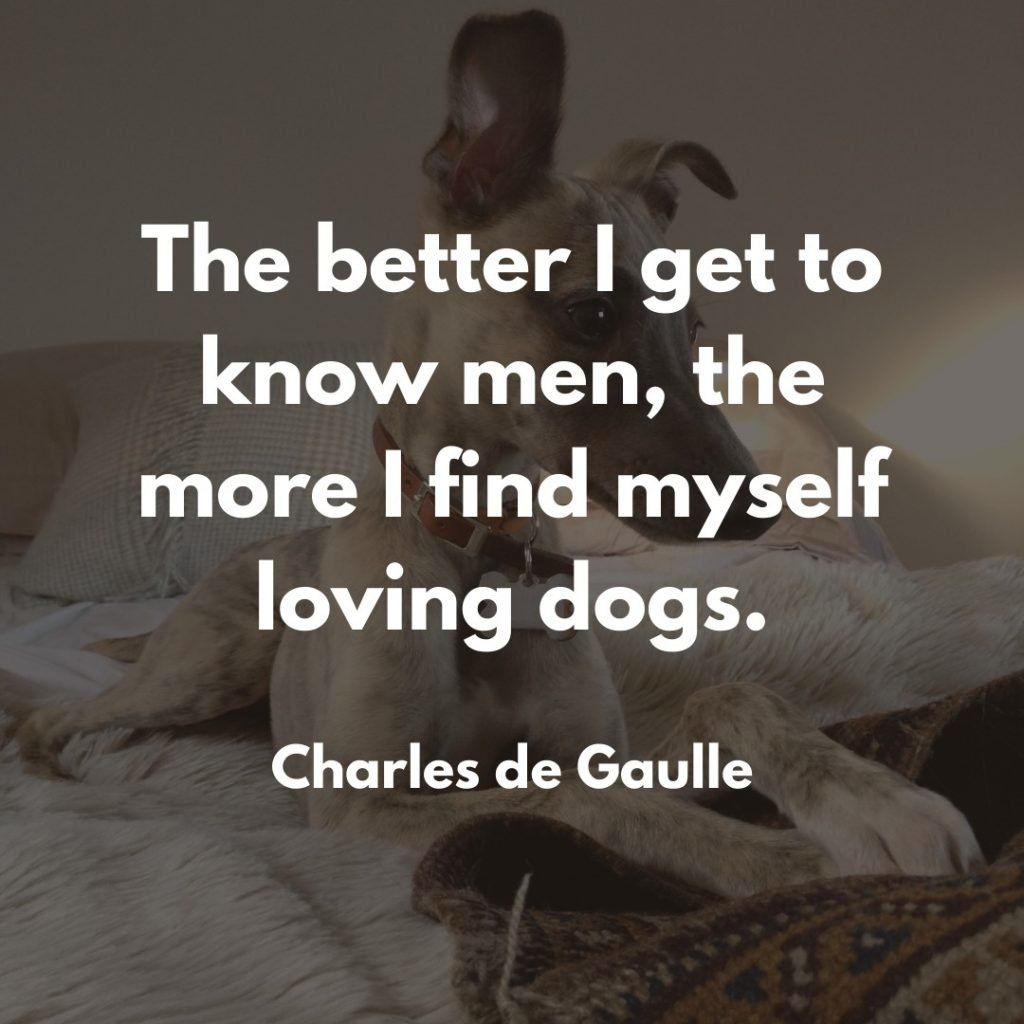 Charles de Gaulle Dog Quote for Instagram