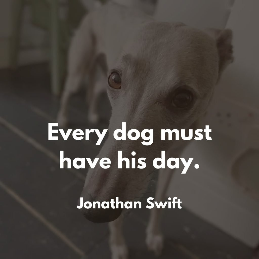 Jonathan Swift Dog Quote