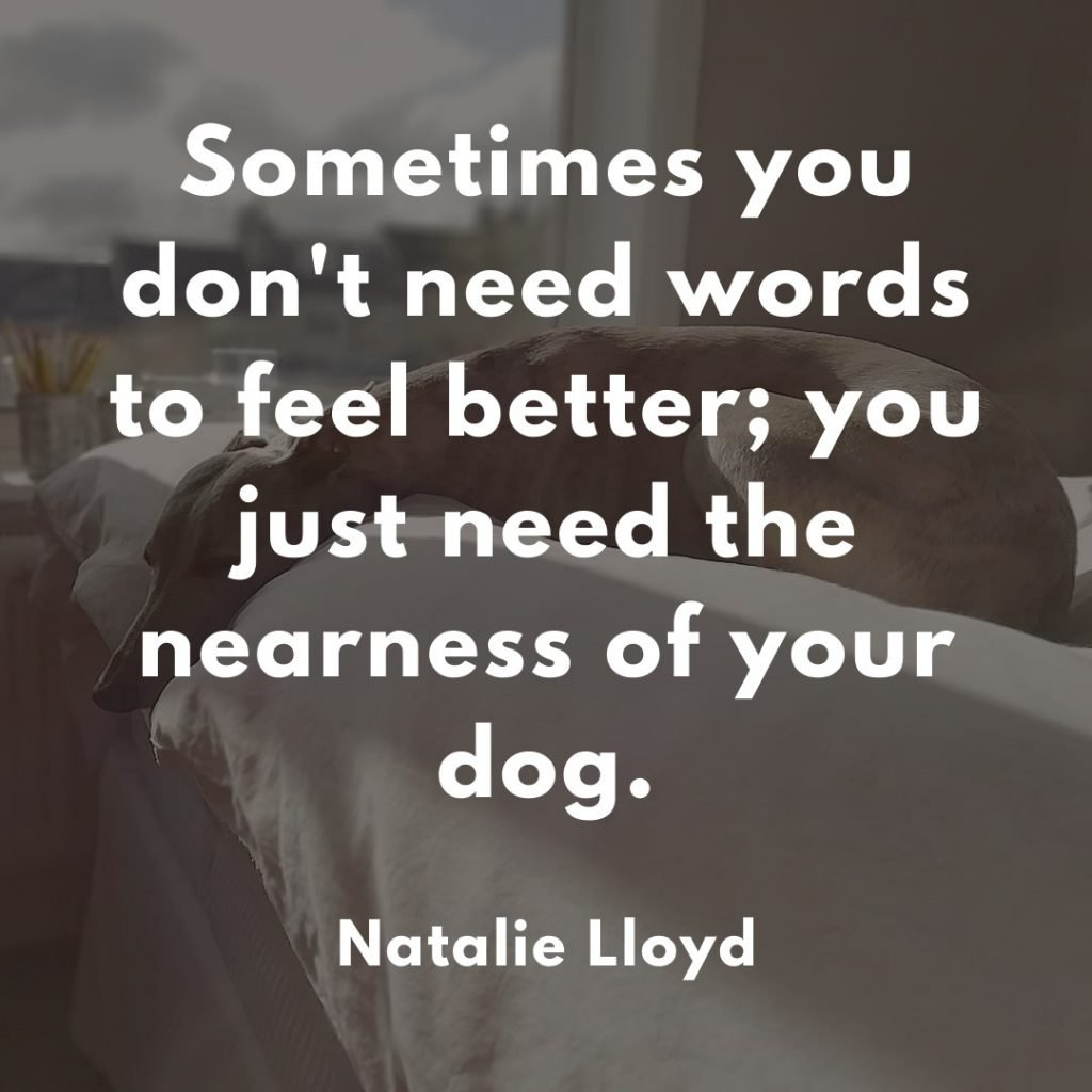 Natalie Lloyd Dog Quote