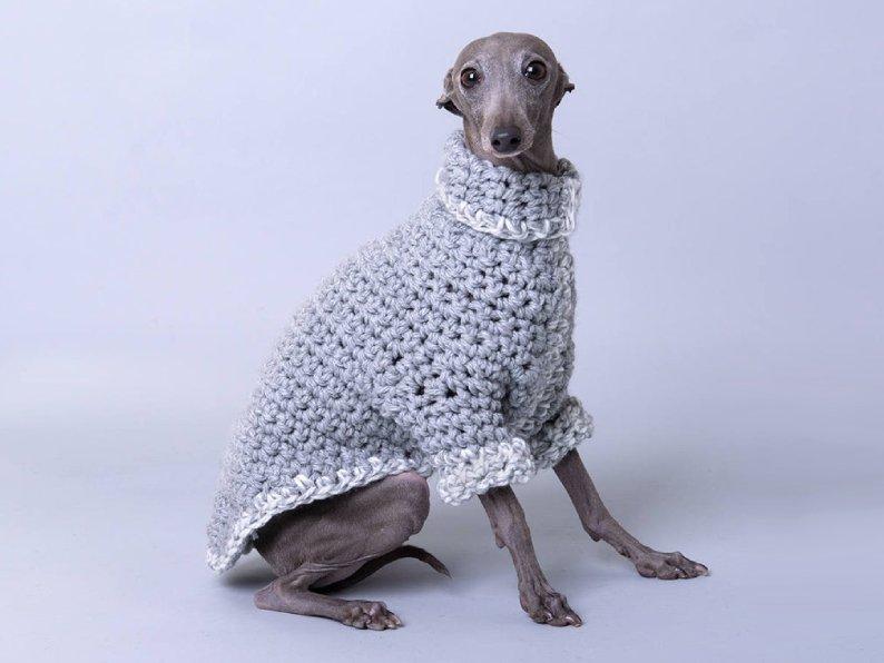 Shantell Design Dog Sweater