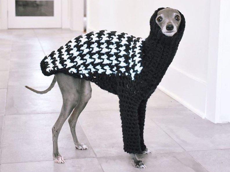 Shantell Design Crocheted Dog Sweaters