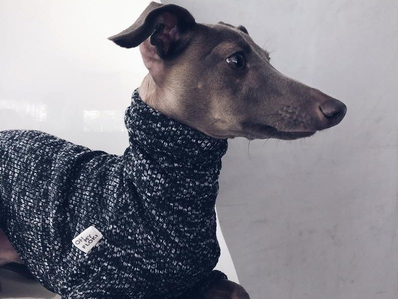 Oh My Floki! Polyester Whippet Sweaters