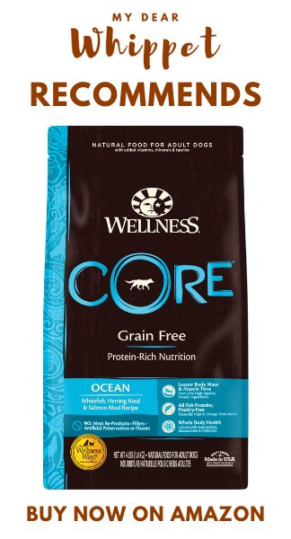 Wellness CORE Ocean Dog Food Dry Grain Free - Salmon & Tuna