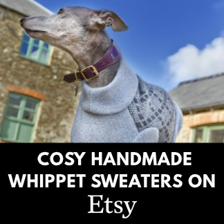 Whippet Sweaters on Etsy