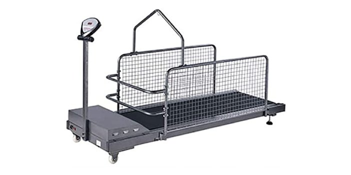 Indoor Dog Exercise Treadmill with Display Screen