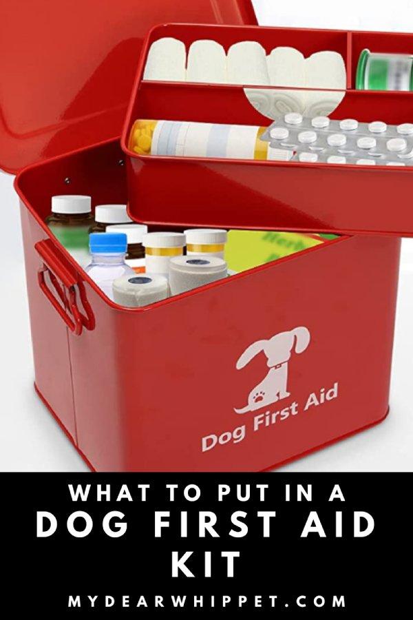 Homemade Dog First Aid Kits