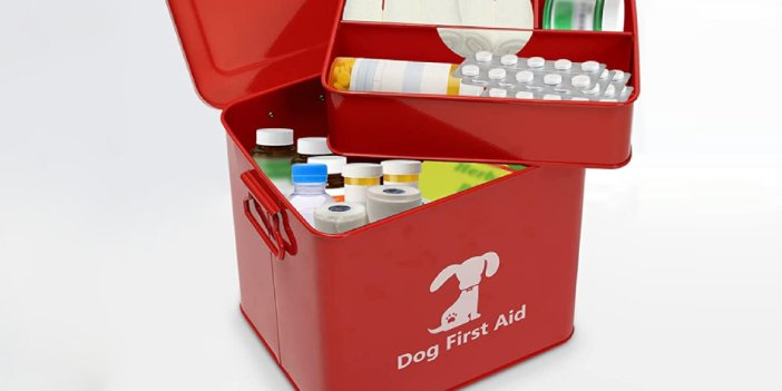 What to Put in a Dog First Aid Kit
